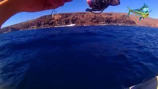 Pesca Ultra Light Jigging. LRF Canarias