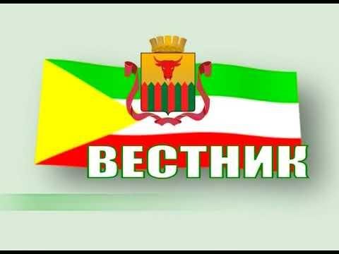Вестник городской Думы. Выпуск 22 февраля