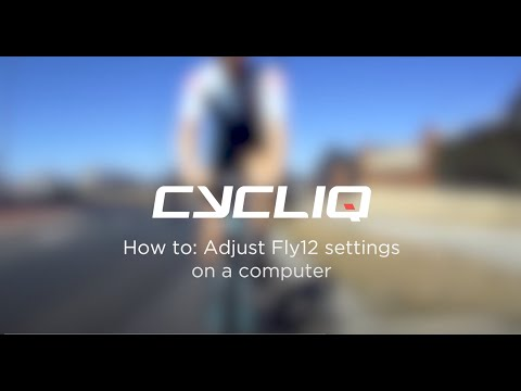 How to adjust Fly12 settings on a computer