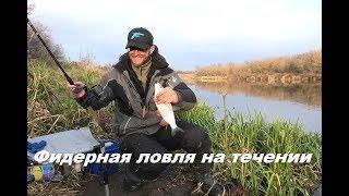 Фидерная ловля дзержинск