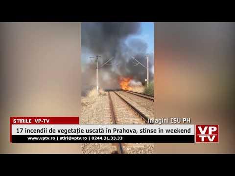 17 incendii de vegetație uscată în Prahova, stinse în weekend
