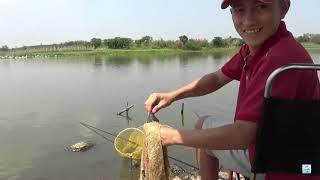 Mồi bén - kéo lưới động nước cá vẫn ăn ào ào
