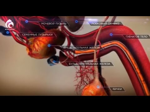 Сроки лечения простатита в стационаре