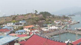 온 마을 사람들이 가족? 정겨운 가족의 섬 '대도'  @생방송 투데이 1850회 20170405
