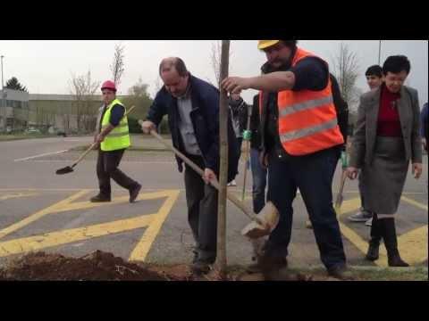 Studenti del Liceo Curie di Tradate piantano 80 alberi