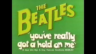 """""""YOU´VE REALLY GOT A HOLD ON ME"""" BEATLES CARTOON."""