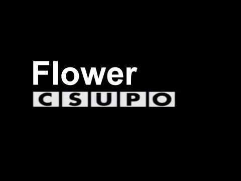 BFB Flower Csupo - смотреть онлайн на Hah Life