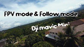 Dji mavic mini fpv mode #short