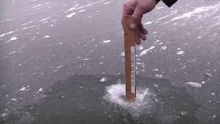 January 2 Ice Report Cook's Bay