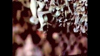 Stereolab: Metronomic Underground(stabilized)