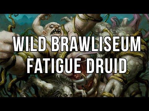 Wild Brawliseum - Fatigue Druid