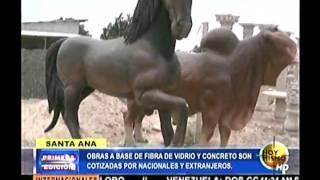 Obras a base de fibra Santa Ana/Francisco Morazán