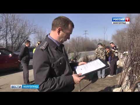 О проверке саженцев на стихийных рынках в Волгоградской области