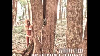 Do It Right- Anthony Green (Beautiful Things(Deluxe Version))