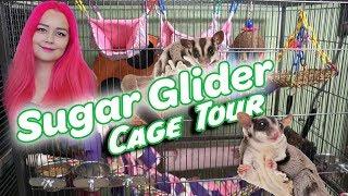 Sugar Glider Cage Tour | Safe Toys
