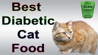 Top 10 Best Diabetic Cat Food