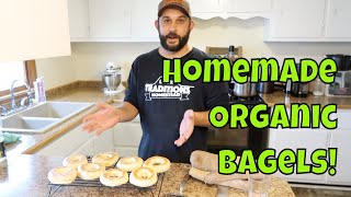 Organic BAGELS from SCRATCH!  Never Buy Store Bought Bagels Again!