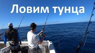 Рыбалка с берега на канарских островах
