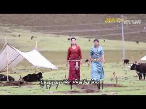 འབྲོག་གླུ། TIBETAN NOMAD SONG BY DOLKAR