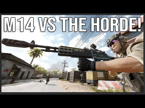 Can the M14 Hold Back the HORDE? - Insurgency: Sandstorm
