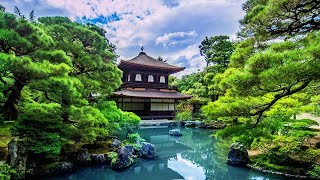 3 HOURS Relaxing Music | Japan Traditional Instrumental Flute | for Meditation, Yoga, Massage, Spa