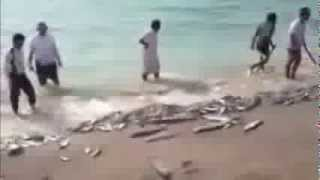 Indians Unbelievable Fishing