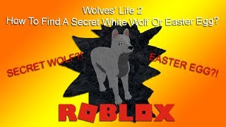 roblox how to make find a player script