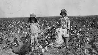 Cotton Fields - Cover - Barry Gonen
