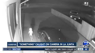 Alien Caught On Camera In La Junta