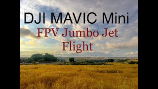 DJI MAVIC MINI JET FLIGHT FPV MODE