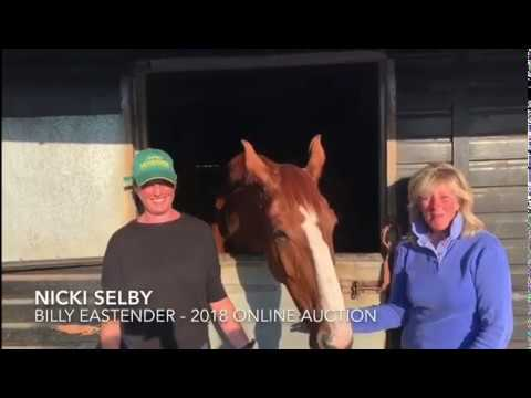Nikki Selby & Helen Witchell talk about their auction purchase