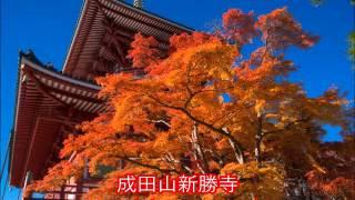 千葉/紅葉スポット