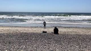 Ocean Side Beach Faces Harsh Critical Review