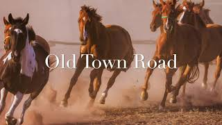 Old Town Road   Lil Nas X Feat. Billy Ray Cyrus (1 Hour)