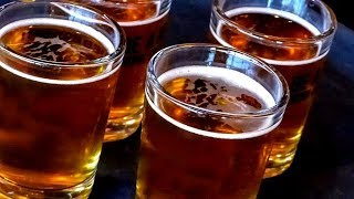 Why Starting A Craft Brewery Is A Bad Idea
