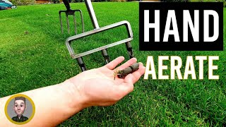 3 Lawn Aeration Tools and When to Use (Solid and Hollow Tine)
