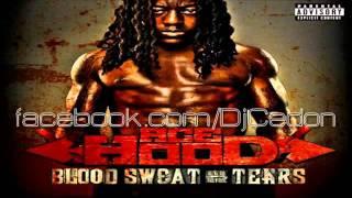 Ace Hood feat. Kevin Cossom - Beautiful [Blood Sweat & Tears] 2011