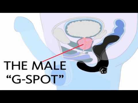 Vorrichtung Denas Behandlung von Prostatitis