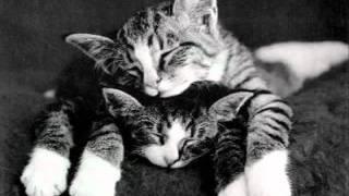 Lets Fall In Love - Lew Sherwood - Eddy  Duchin Orch - 1934