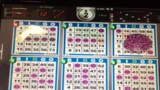 Bingo card minding system