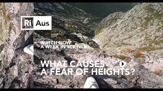 What causes a fear of heights? - A Week in Science