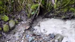 Armageddon Creek exit flow 30 March 2011