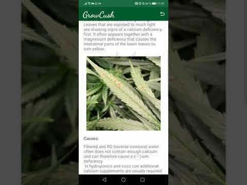 GrowCush - Cannabis deficiency detection .APK Video Trailer