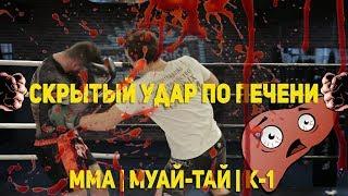 Скрытый удар по печени - тайский бокс, ММА