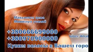 Покупка волос в Украине , дорого оценим ваши волосы от 35 40 сантиметров , купим волосы натуральные по высокой цене от компании ООО Скупка Волос Украина , Покупка Волос в Украине - видео