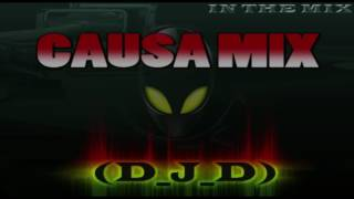 Causa Mix By D J D