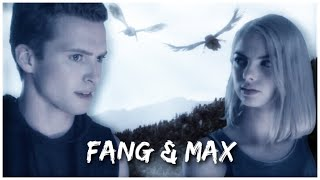 Fang & Max || I Almost Lost You Again