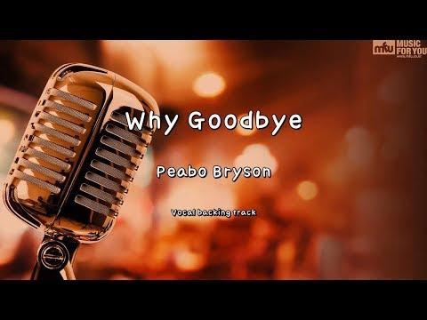 Why Goodbye - Peabo Bryson (Instrumental & Lyrics)