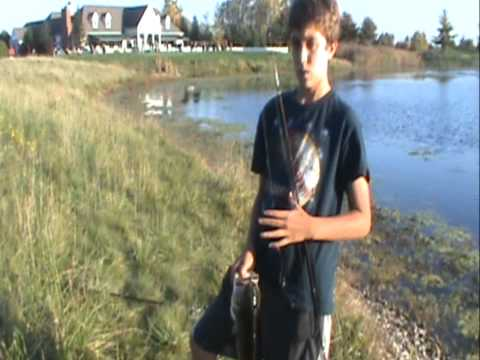 Bass fishing With Yum Stick baits at Golf course pond