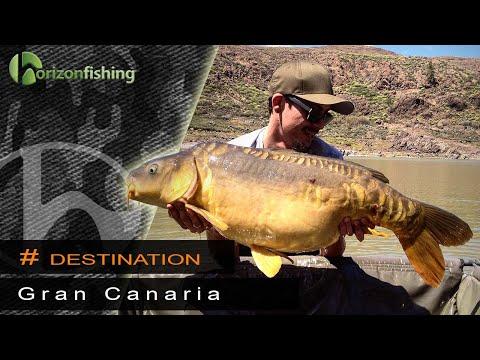 Karpefiskeri på Gran Canaria i Presa De Chira